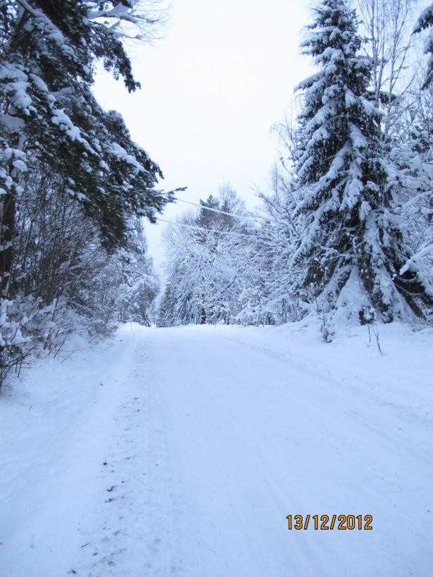 Vintern är så vacker! :o :D