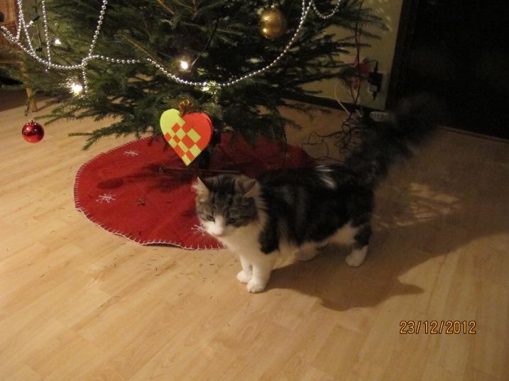 Nessa och julgranen!