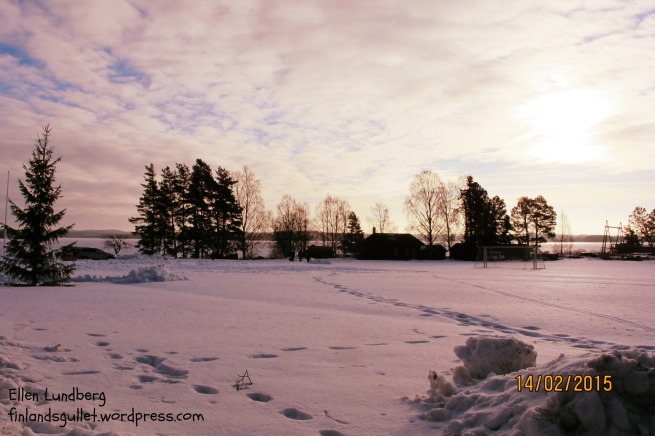 vinterdag sjövik 15 (1)
