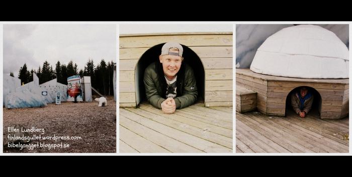 Orsa-björnpark, 15 (5)
