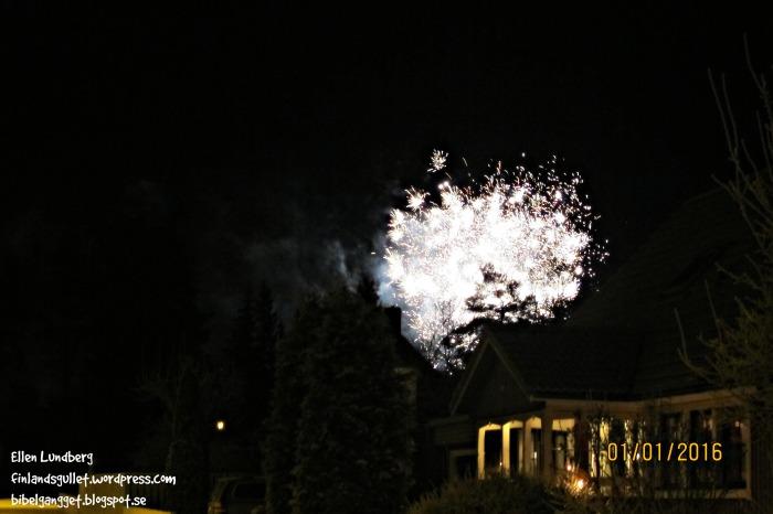 Nyårsafton 2015 (3)