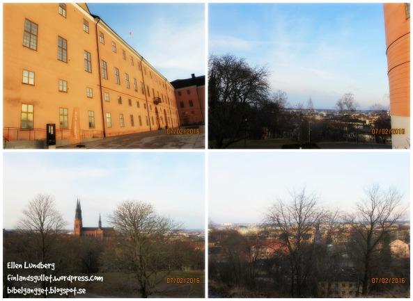 Uppsalamys 16 (6)